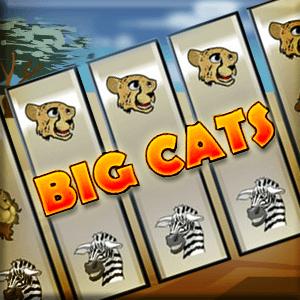 AARP's online Slots: Big Cats game